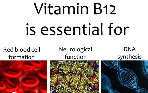 Oral Sex and Vitamin B12