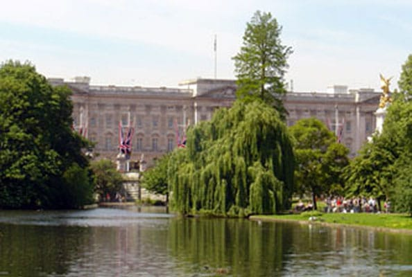 Buckingham Palace Garden Party